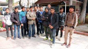 3 günde 49 kaçak göçmen yakalandı