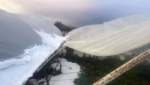 Antalya'da çiftçiyi dolu vurdu