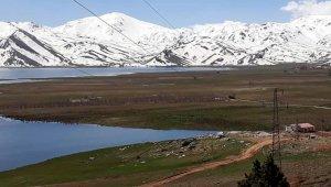Girdev Gölü'nde binlerce balık telef oldu