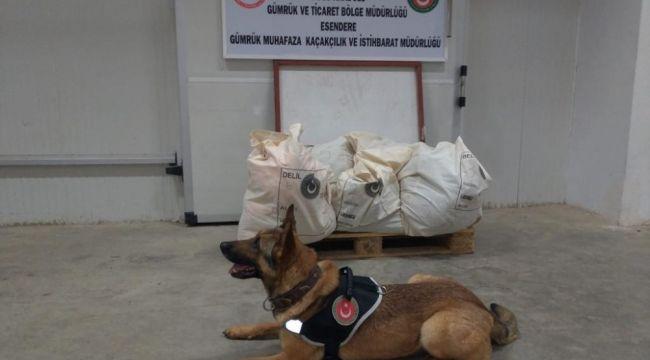 Gümrükte İranlı şahsın valizinde 221 kilo patlayıcı ele geçirildi