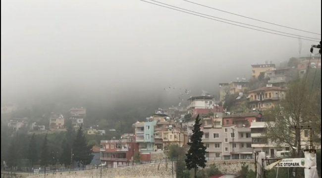 Hatay'da yoğun sis hayatı olumsuz etkiliyor