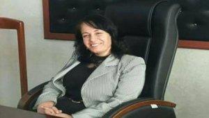 HDP Silopi Eş Başkanı yardım yataklık suçundan gözaltında
