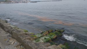 Sahil turuncuya büründü