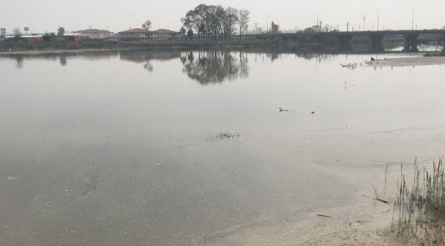 Sakarya Nehrindeki kirlilik seviyesi en üst seviyede