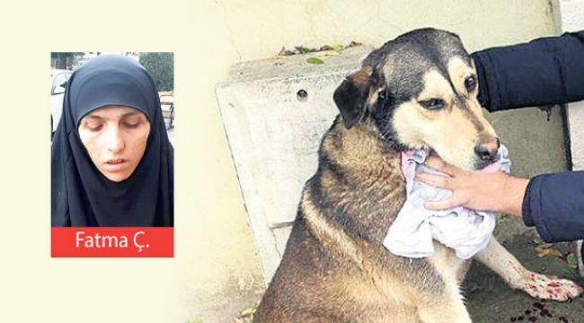 Sokak Hayvanlarını Kesip Yiyen Cani Kadın kan Dondurdu!