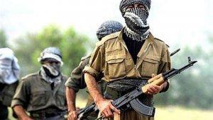 Terör örgütü PKK gözünü masum çocuklara dikti