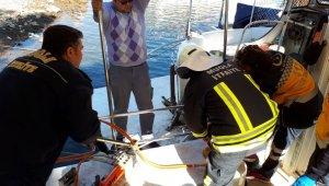 Vücuduna teknenin korkuluğu saplanan 14 yaşındaki çocuk ağır yaralandı