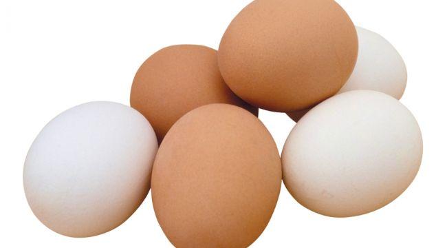 Yumurta üretimi Şubat'ta azaldı