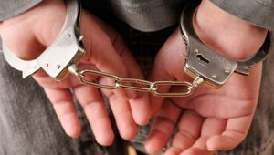 İğrenç kitabın yayıncısı polise teslim oldu