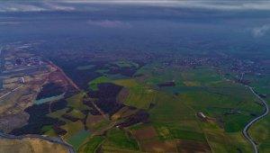 İstanbul Havalimanına komşu tarlalar icradan yarı fiyatına