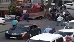İstanbul'da köpek dehşeti