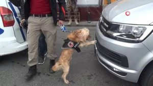 Narkotik köpeği 'Kuki' vatandaşların ilgi odağı oldu