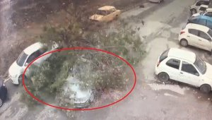 Sanayide test sürüşü yapılan aracın üzerine ağaç devrildi