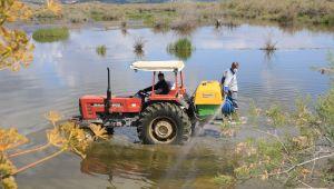 Selçuk Belediyesi sineksiz bir yaz için mücadele başlattı