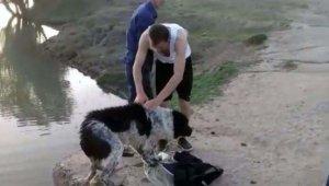 Su kanalına düşen köpek kurtarıldı