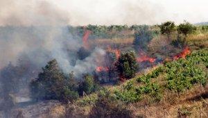 Turgutlu'da 15 dönüm tarım arazisi küle döndü