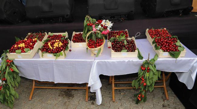 Bayındır Balcılar Kiraz Şenliği 9. Yılında