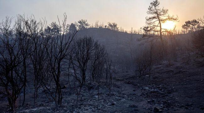 CHP İzmir Milletvekilleri İzmir Yangını İçin Meclis Araştırması İstedi