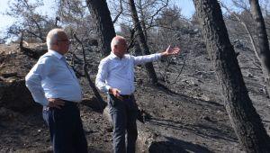 Kemalpaşa Belediye Başkanı Yangından Zarar Gören Tırazlı ve Menderes'e gitti