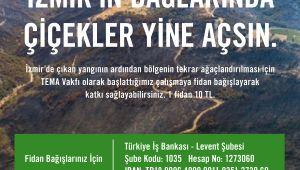 TEMA Vakfı: İzmir için fidan bağışlarınızı bekliyoruz