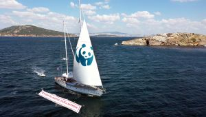 Blue Panda İstanbul'dan İzmir'e Yelken Açtı