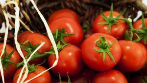 Türk domatesi Rusya vizesi bekliyor