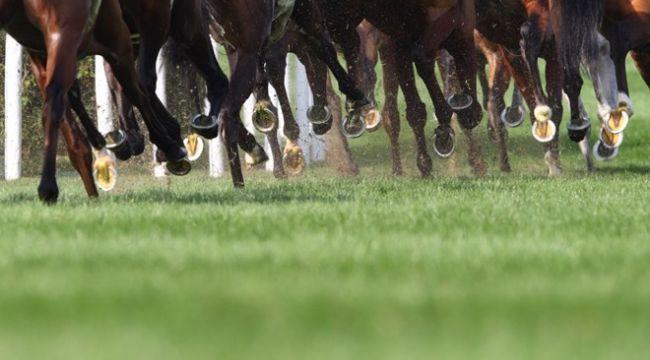 Bakanlıktan at yarışlarına ilişkin açıklama