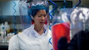 Çinli uzman: Dünya corona virüsten daha kötü salgınlarla yüzleşecek