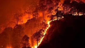 Boğaziçi Üniversitesi Çevre Bilimleri Enstitüsü'nden araştırma:Toprağın nemini ölçen teknoloji ile orman yangınları önlenecek