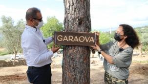 Bodrum Gençlik Tarım Kampı'na Sertap Erener'den Destek