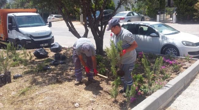 Bodrum Belediyesi'nden Suda Yüzde 80 Tasarruf