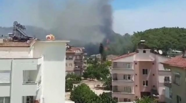 Antalya Kemer'de yangın çıktı