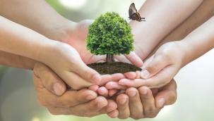Gündelik hayatta çevreyi korumak için yapabileceğiniz 7 şey